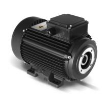 Электродвигатель 11 кВт, 380 В, 1450 об/мин. (полый вал, фланец 87 мм), EME H6091573I8100