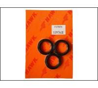 Комплект масленых уплотнений для серии XXT, XLT, Hawk 1.099-766.0/260003