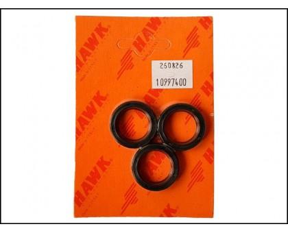 Комплект масленых уплотнений для серии XXT, XLT, Hawk 1.099-766.0