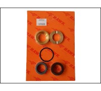 Комплект уплотнений с латунью  на 1 поршень для серии NPM, Hawk 260037