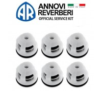Комплект клапанов и колец для серии RC, Annovi Reverberi 2186