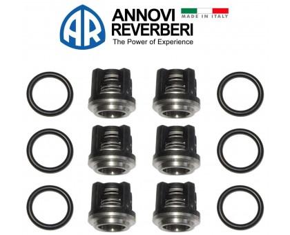 Комплект клапанов и колец для серии RR, Annovi Reverberi 2864